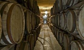 Parras  Coahuila wine